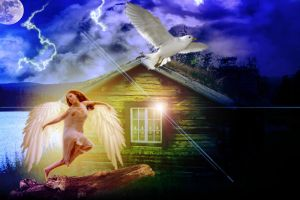 The Angel Dance: by Photovision62