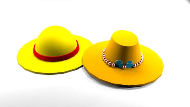 Ace and Luffy's Hats by SonGabriel200314