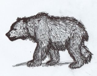 Steppe brown bear by AnonymousLlama428