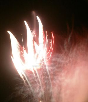 Claws in Fireworks