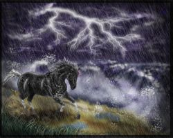 Storm_in_my_heart by AneriWolfy