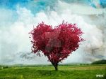 The Love Tree by Isdelth