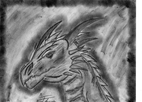 Charcoal Dragon by Fire-Blitz