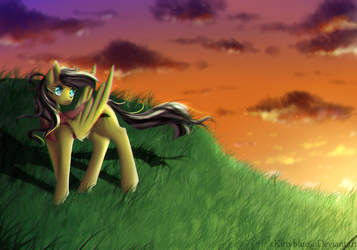 MLP Sunset Commission by xKittyblue