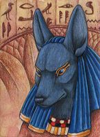 Anubis by Yote