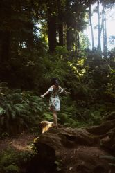 Explore by cindywebbphotography