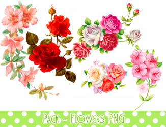 Pack - Flowers PNG #1 by MinmeyPrints