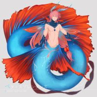 Betta mermaid by nekomiti