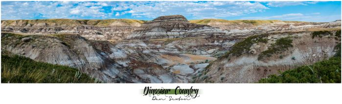 Dinosaur Country by Solau