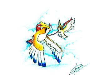Mega Pidgeot and Pidgey by goldprovip