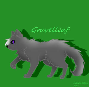 new pic of Gravelleaf by Gravelleaf