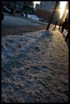 Montreal winter morning light by elgrizzly