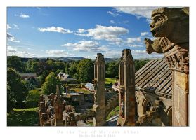 On the top of Melrose Abbey by denise-g