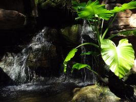 Small Waterfall by LilipilySpirit