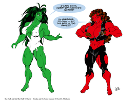 Commission 2011 - She-Hulks by DavidCMatthews