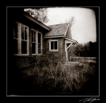 Holga House 2 by electricjonny