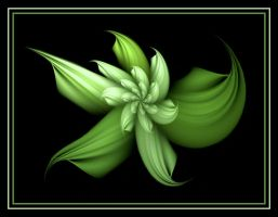 Rare Green Flower by Thelma1