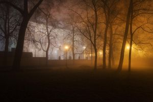 feel the night, feel the mist XI by JoannaRzeznikowska