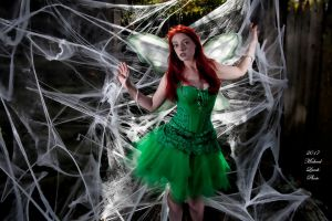 MLP Kalaisha Faerie First Caught in Web Oct17 7954 by MichaelLeachPhoto