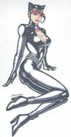 Catwoman in Recline by RobertMacQuarrie1