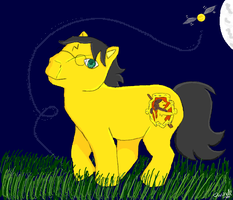 Harry Potter My Little Pony by omisgirl