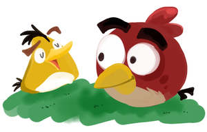 angrybirds by jgu112