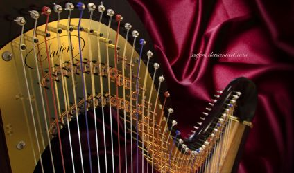 Harp close-up by Saifers