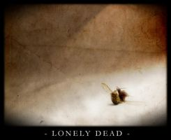Lonely Dead by shadowiness