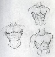 chest studies by jEROMEaNIMATIONS