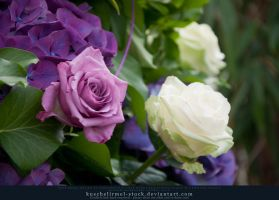 Smell The Roses Preview II by kuschelirmel-stock