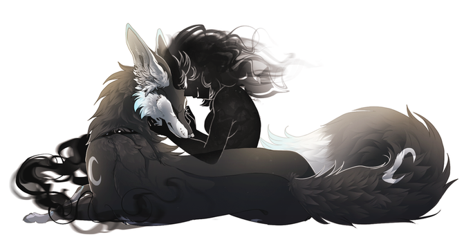Fox and Shadow by The-F0X