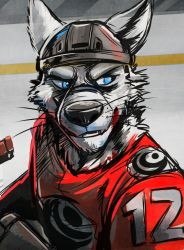 Hockey Color Test by Temiree