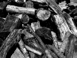 wood pile by redtrain66