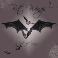 Bat Wings I by cocacolagirlie