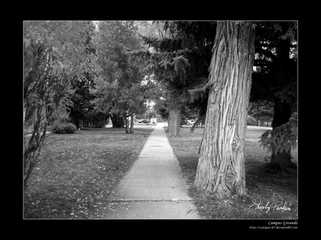 Campus Grounds by Caligari-87