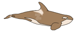 Cappuccino Orca: SCP-173-J by Dolphingurl21stuff