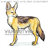 Black Backed Jackal - Commish by WildSpiritWolf