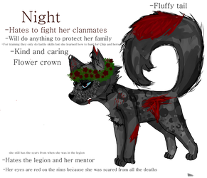 Night when she was in the legion as a kit by XxNightSparrowxX