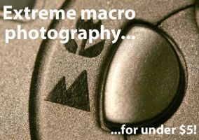 Extreme Macro photograpy by sharq