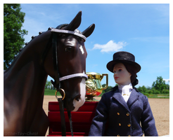 Breyer - Dressage Champions by The-Toy-Chest