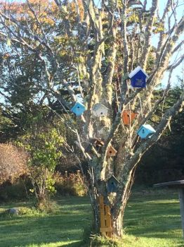 The birdhouse tree by LtFumbles