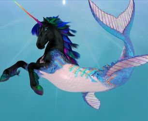 Black Rainbow Seacorn by Dakorillon