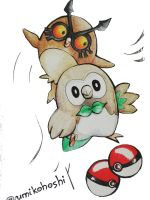 Hoothoot and Rowlet