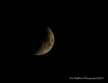 Is it sad that i look for to the moon every night by lisahuffman2001