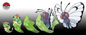 010 - 012 Caterpie Line