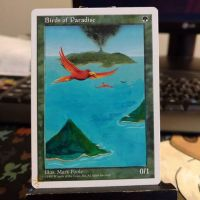 Birds of Paradise: Textless by Hurley-Burley-Alters