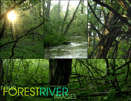 RIVER FOREST STOCK. by smosh-stock