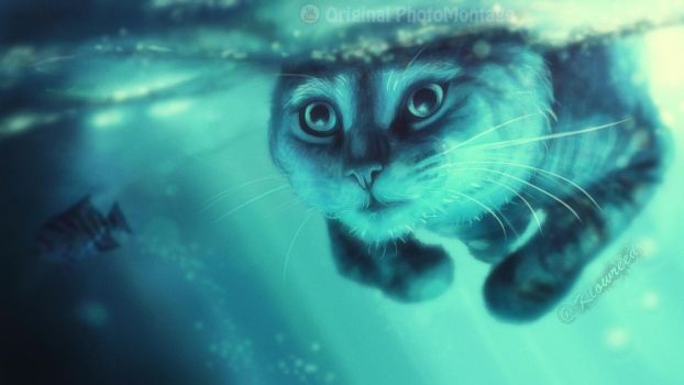 Cat in water by Klowreed
