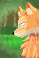 The Fox by Woulvun