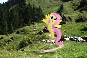 Fluttershy embracing nature by StormXF3